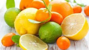 Citrus Day!